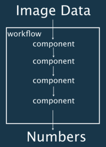 Components in the context of a workflow for bioimage analysis.