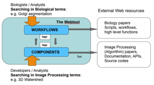 The knowledge structure and the access-flow of the webtool. Linking between workflow pages (biological entity) and component pages (image processing entity) bridges the two disciplines.